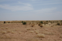 #7: Dunes in grassland north of the Niger
