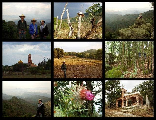 Collage: team, hat, Raul, Toliman, David, forest, Adriel, flower, chapel