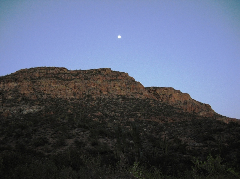 View from the bottom of the canyon with the the moon rise.