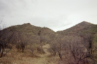 #1: View East of the Confluence