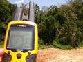 #3: Our first and aborted attempt to enter the jungle