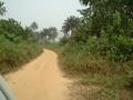 #5: Dirt road towards Confluence