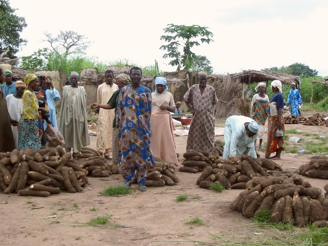 Yams market at Soro