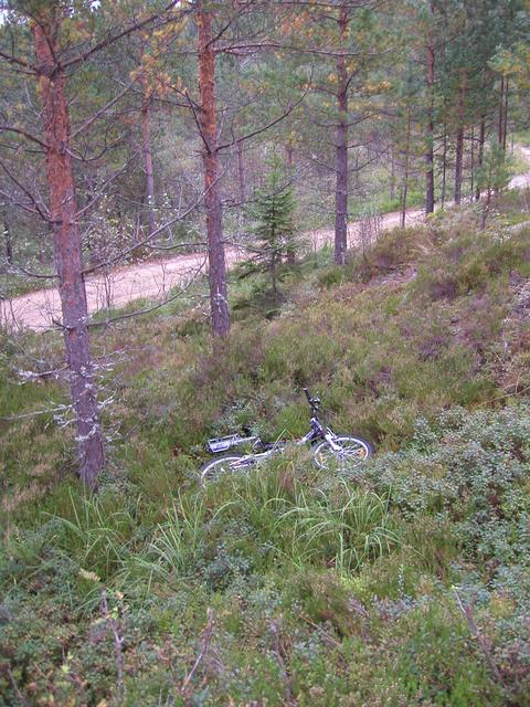 Leaving the bike in the bracken