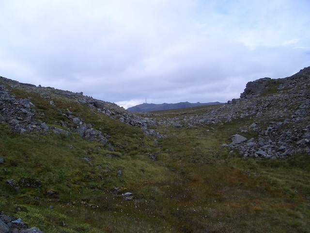 View to the West
