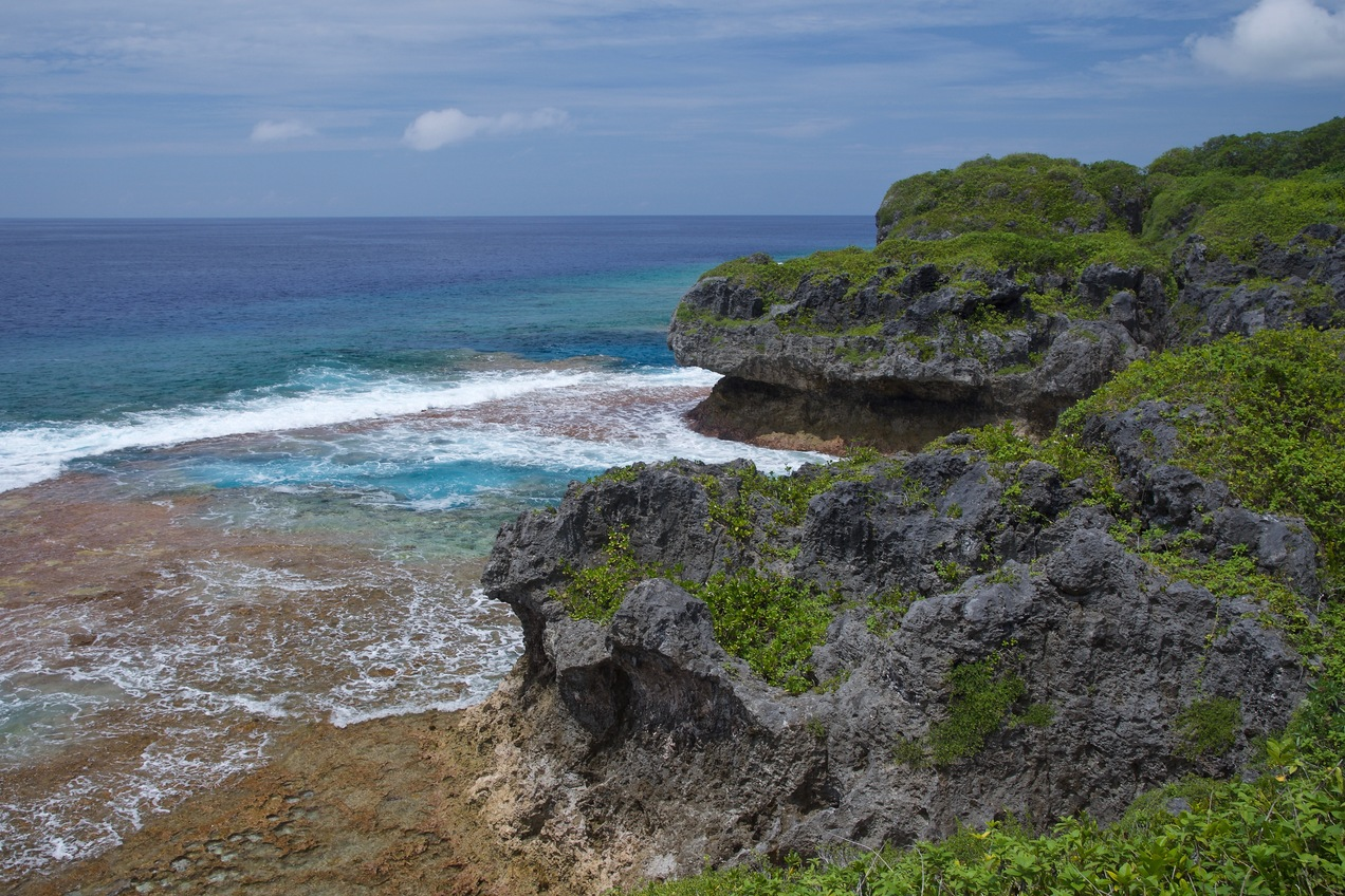 Another view of the coast of Niue, 8.86 km from the confluence point (which lies off the left-hand side of this photo)