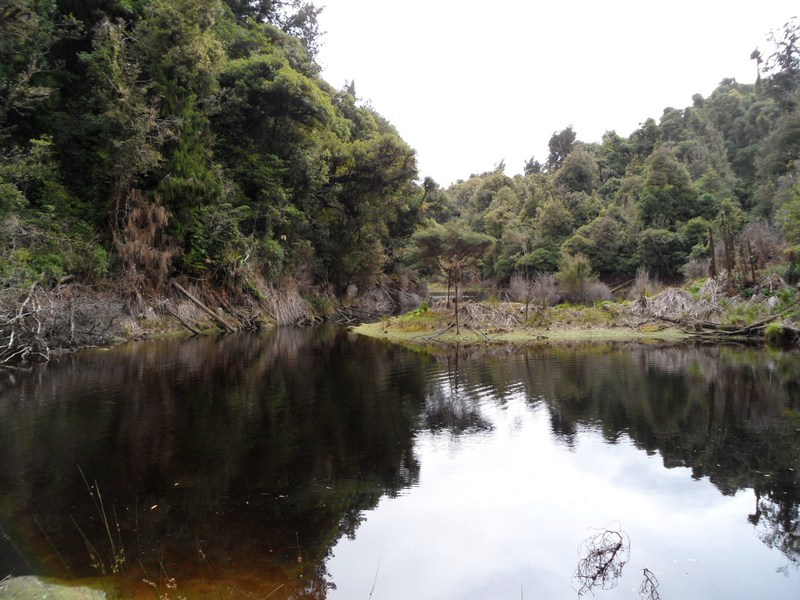 Arm of lake Hiwiroa and its steep sides