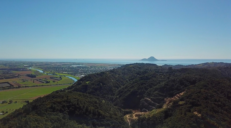 View North from about 100 m above the point: Whakatane, Bay of Plenty, Whale Island