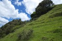 #2: View West (along the steep slope, towards a stand of Manuka/Kanuka)