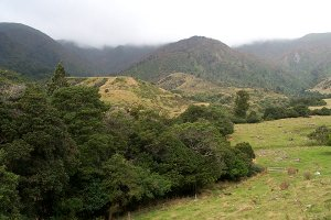 #1: East towards the Ruahine Ranges