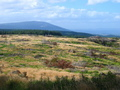 #2: View from 250m towards South