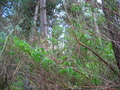 #3:  View to the South