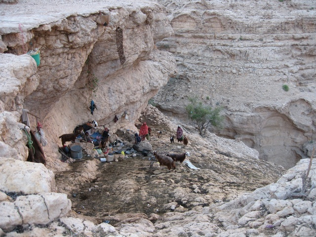 Bedouin camp near the confluence point