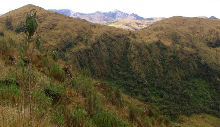 East - View over rainforest and highlands to the Inca Ruins of Puncuyoc