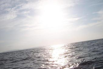 #1: 11N 122E Confluence at foreground and also looking West