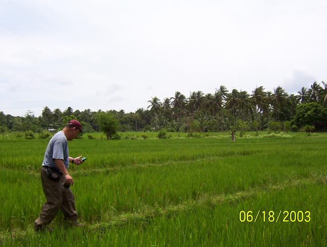 Balancing act on rice field dike to the last 50 meters of our target.
