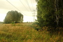 #7: Electric power line