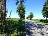#10: Road to CP / Дорога к точке