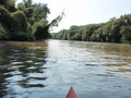 #6: Canoeing on the border river Maros - Mureș