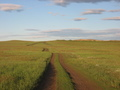#7: Steppe road; 500m from the point