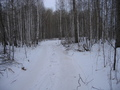#9: On our way to the next confluence. The road between two provinces, Kurganskaya & Sverdlovskaya oblast's. We decided not to return by major road (roundabout way) but to discover alternative shorter path