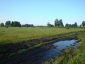 #7: Где по полю где по грязи/Somewhere onto a field, somewhere onto a mud