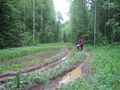 #10: At the same timber-carrying road between Sverdlovsk and Perm Regions of Russia (between Verkhnyaya Oslyanka and Kyn villages)
