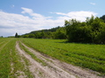 #9: The road towards confluence / Дорога на 58°N 93°E