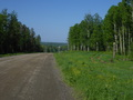 #10: The road to the ferry over Yenisey, 69th km / Дорога на паром на р.Енисей, 69-й км
