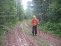 #8: Forest road from oil-transfer station to Romanovo village