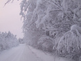 #6: Зимняя дорога / Winter road