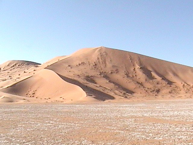 The dunes northwest of the point