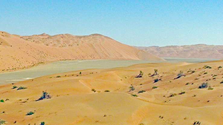 View looking ENE to the confluence area from 700 ft (213 m) distant; The Confluence is located on the sabkha, with a line of dunes just to the North.