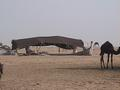 #7: The traditional Bedouin tent, made out of sheep wool.
