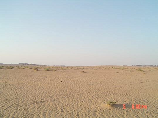 North view, where Abraq al-Badī` can be seen