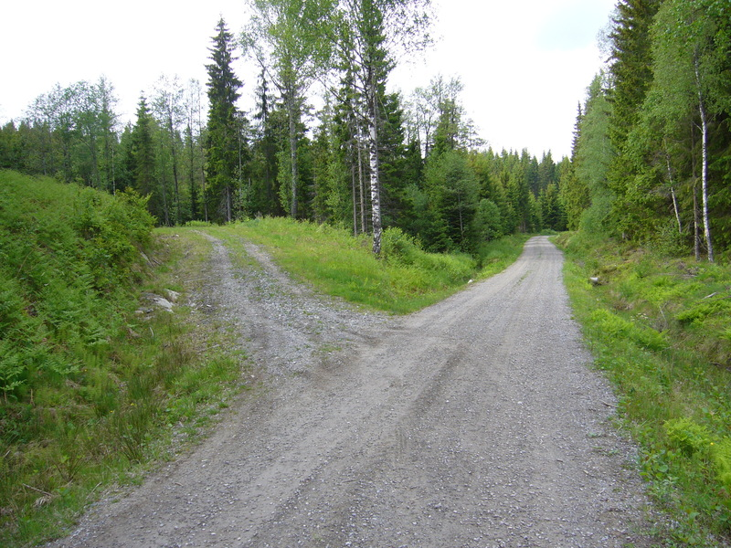 Fork to the parking place from the main forest road