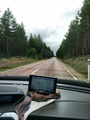 #9: No turns, no junctions... for 68 km. I love driving in Sweden