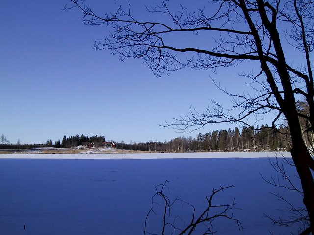 View over the now frozen lake just below fishing cabin