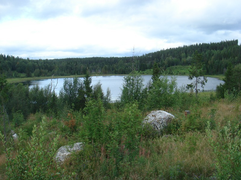 North view Lake Gardstjärnen / Nördliche Sicht