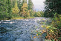 #4: Storbäcken downstream from the confluence