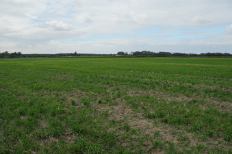 #1: The Confleunce area and looking west with farm at edge of the field