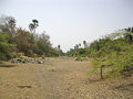 #14: We crossed a dry stretch of the Niokolo Koba River; it's a major tributary of the Gambia River