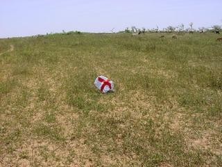 #1: The flag on the Confluence in a pasture