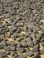 #5: A closer look at the black rocks