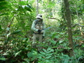 #10: Jason vs the jungle.  Any takers for the next Star Wars episode on the jungle planet?