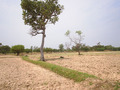 #8: General view of the area near the confluence (II)