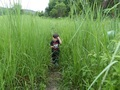 #5: Andy in the tall grass.