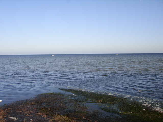 Looking directly in the direction of the Confluence, 1.22 km offshore