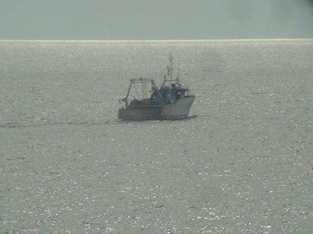 A Tunisian trawler working on the banks around Île de la Galite