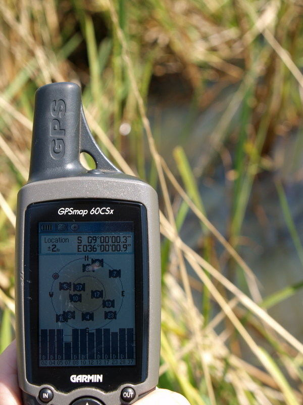 GPS in the rice field